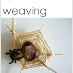 Conker Spiderweb Weaving