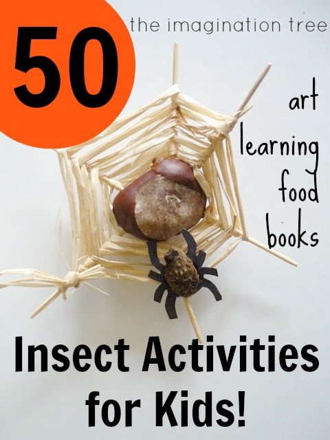 50 Activities For Playing And Learning With Insects The