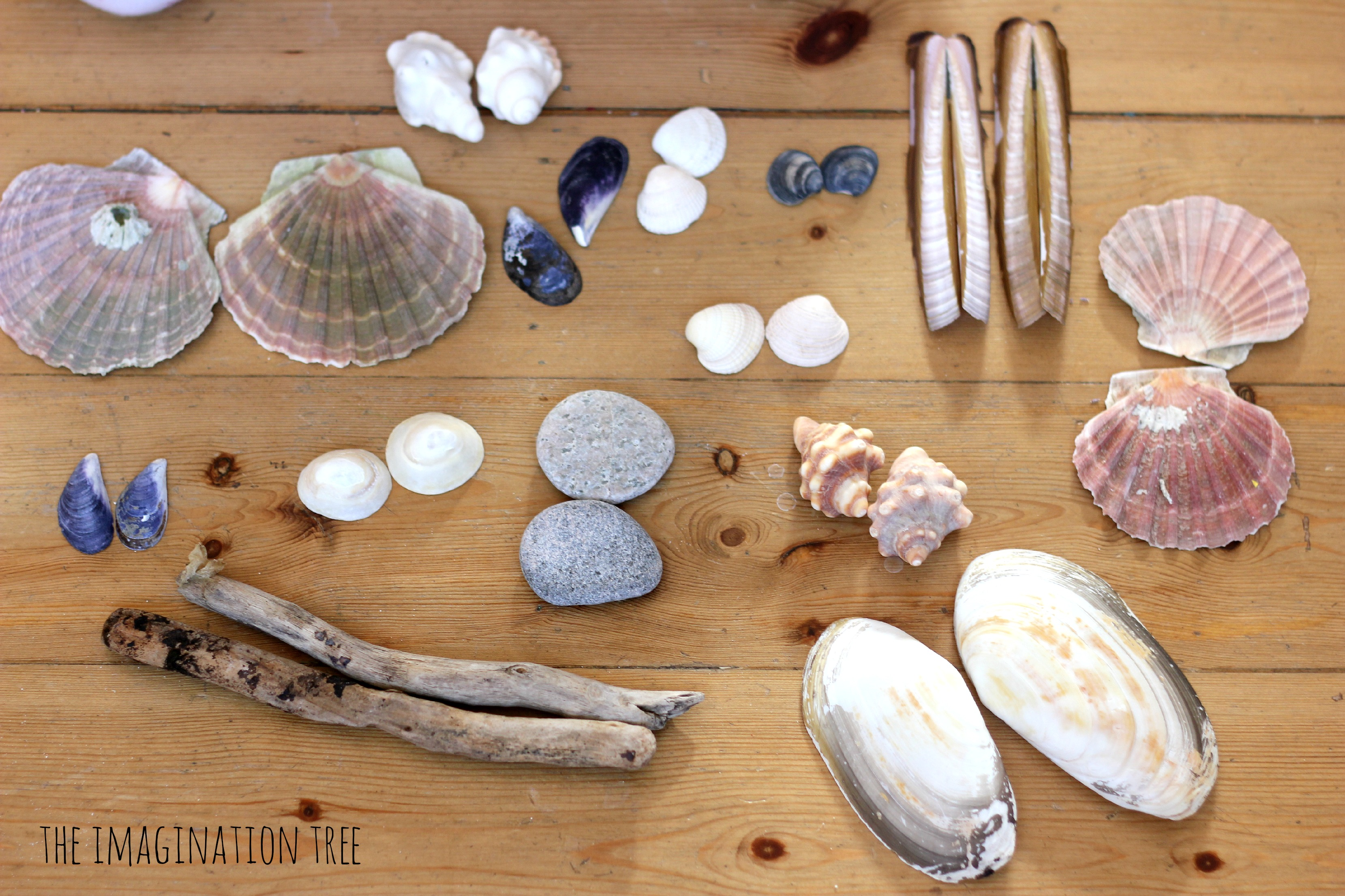 Symmetrical pattern making with natural materials the for Children s material