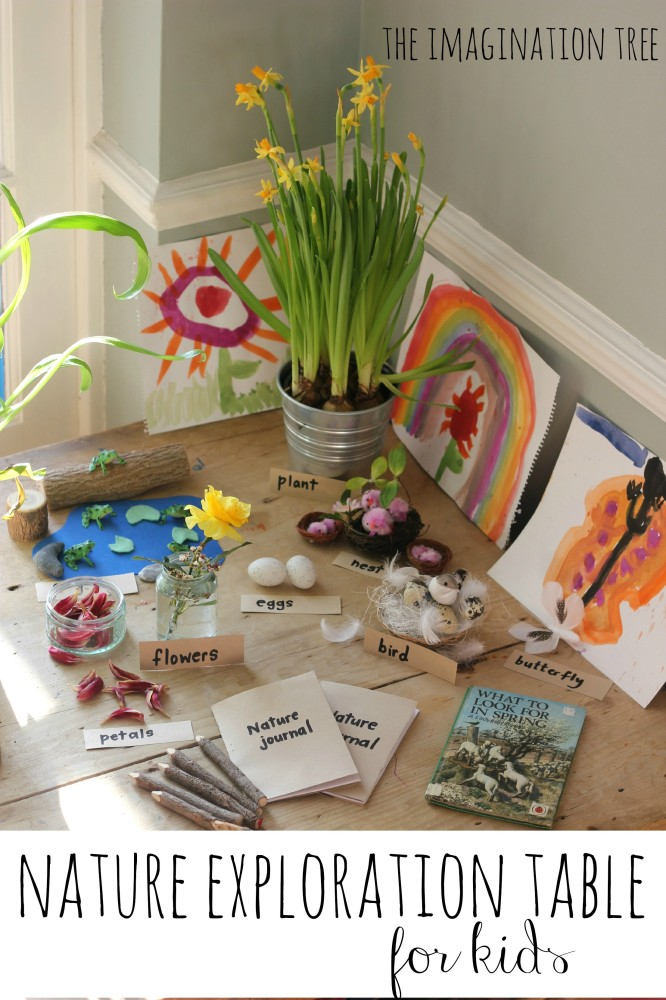 Nature Exploration Table - The Imagination Tree
