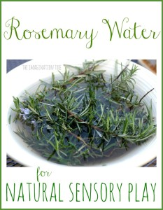 Rosemary water for sensory play