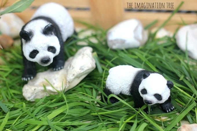 Panda bear toys