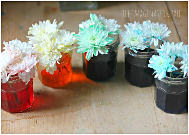 coloured+flowers+in+jars