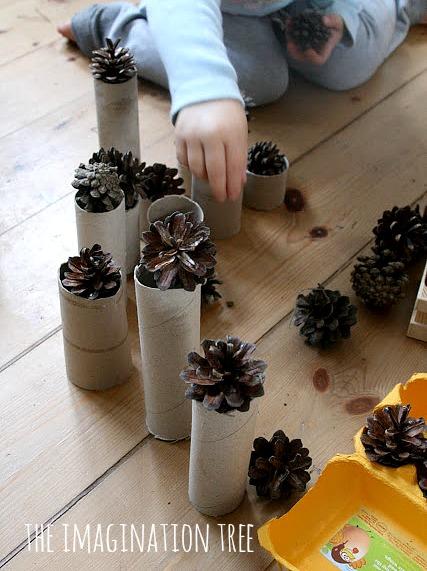 pine cones discovery box