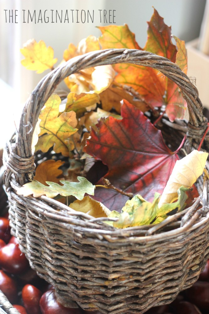 Autumn leaf collection basket
