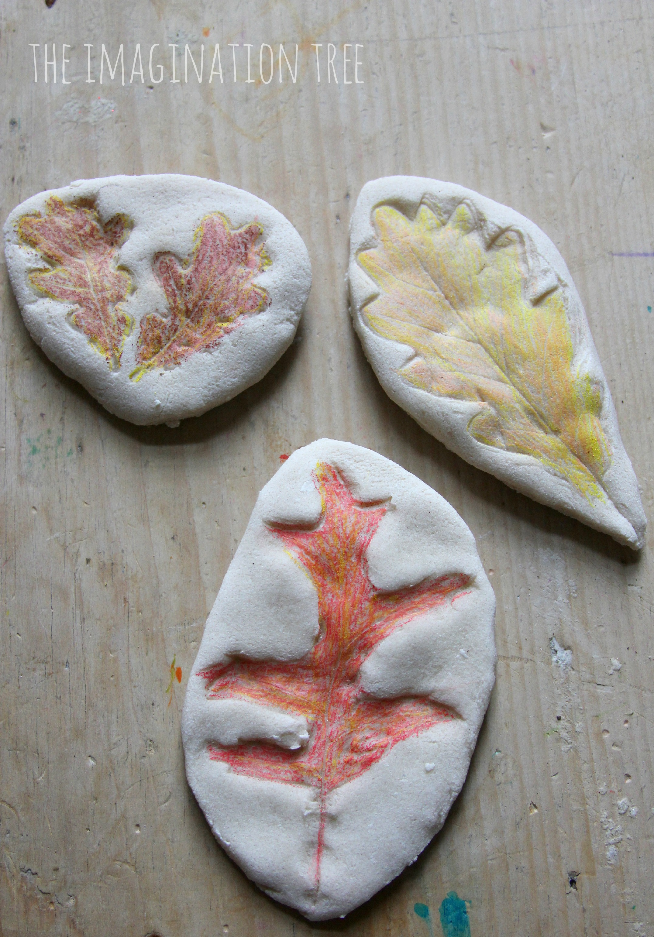 coloured salt dough leaf impressions the imagination tree