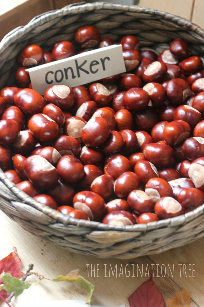 Conker collection basket