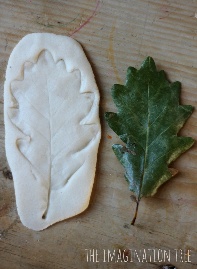 Leaf impressions in salt dough