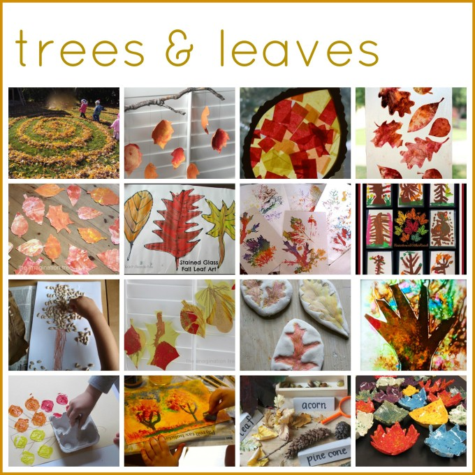 Trees and leaves activities