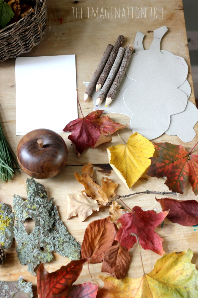 Writing and drawing prompts on the nature table