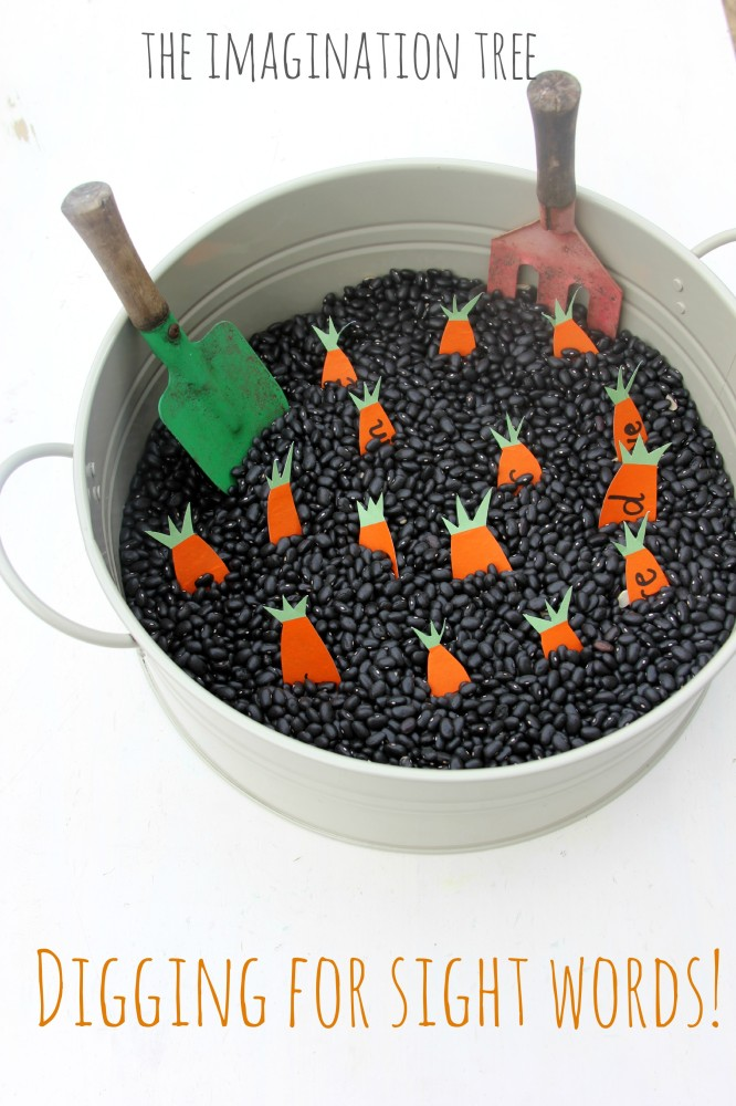 Digging for sight words sensory activity with black beans in a tub, with paper carrots with sight words on them, and gardening tools.