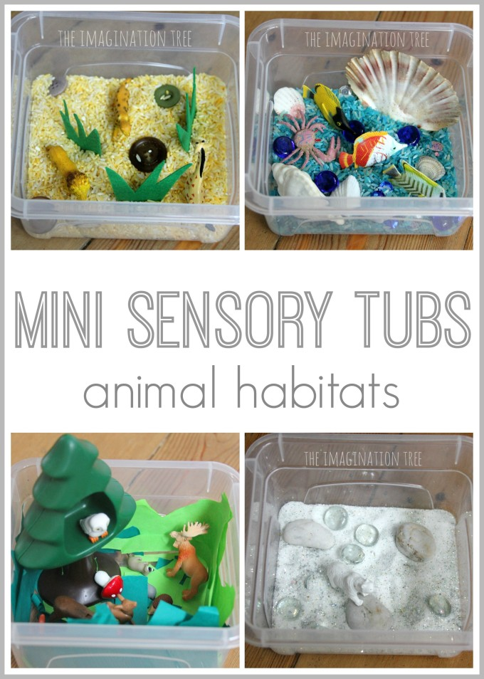 Mini sensory tubs- small world animal habitats