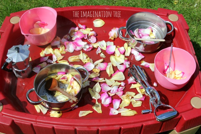 Invitation to play with cooking equipment and rose petals in water