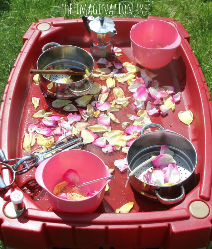 Petals and water in the sensory table