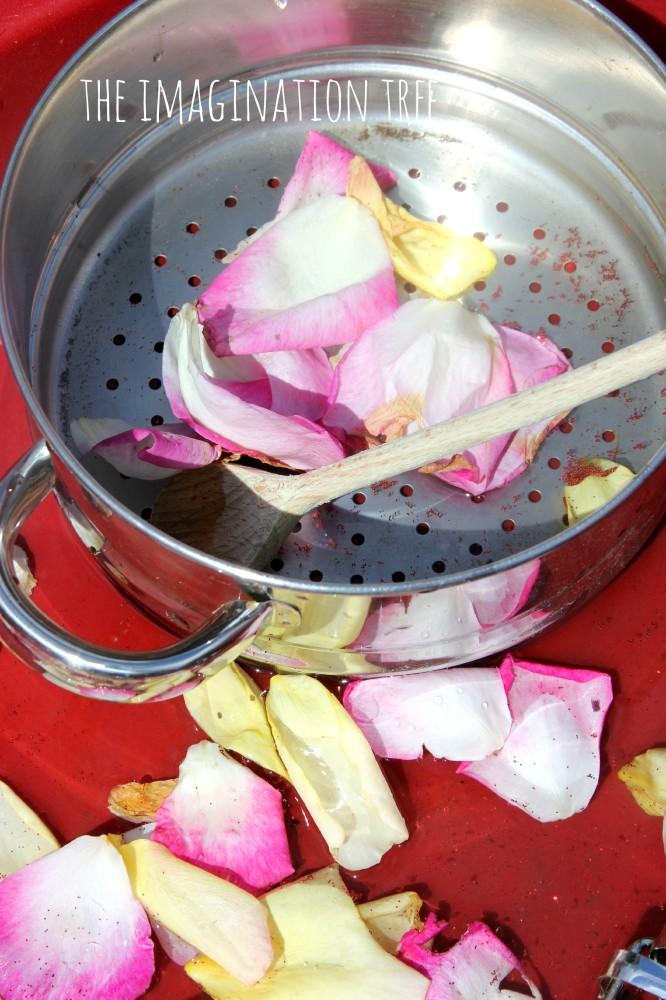 Rose petal soup sensory play