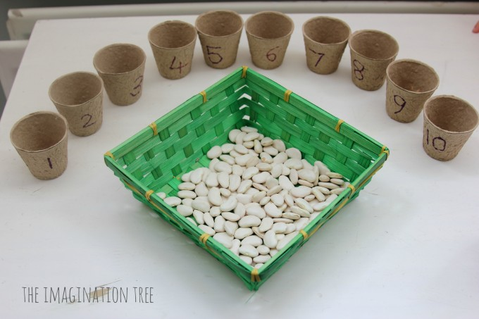 Bean counting activity