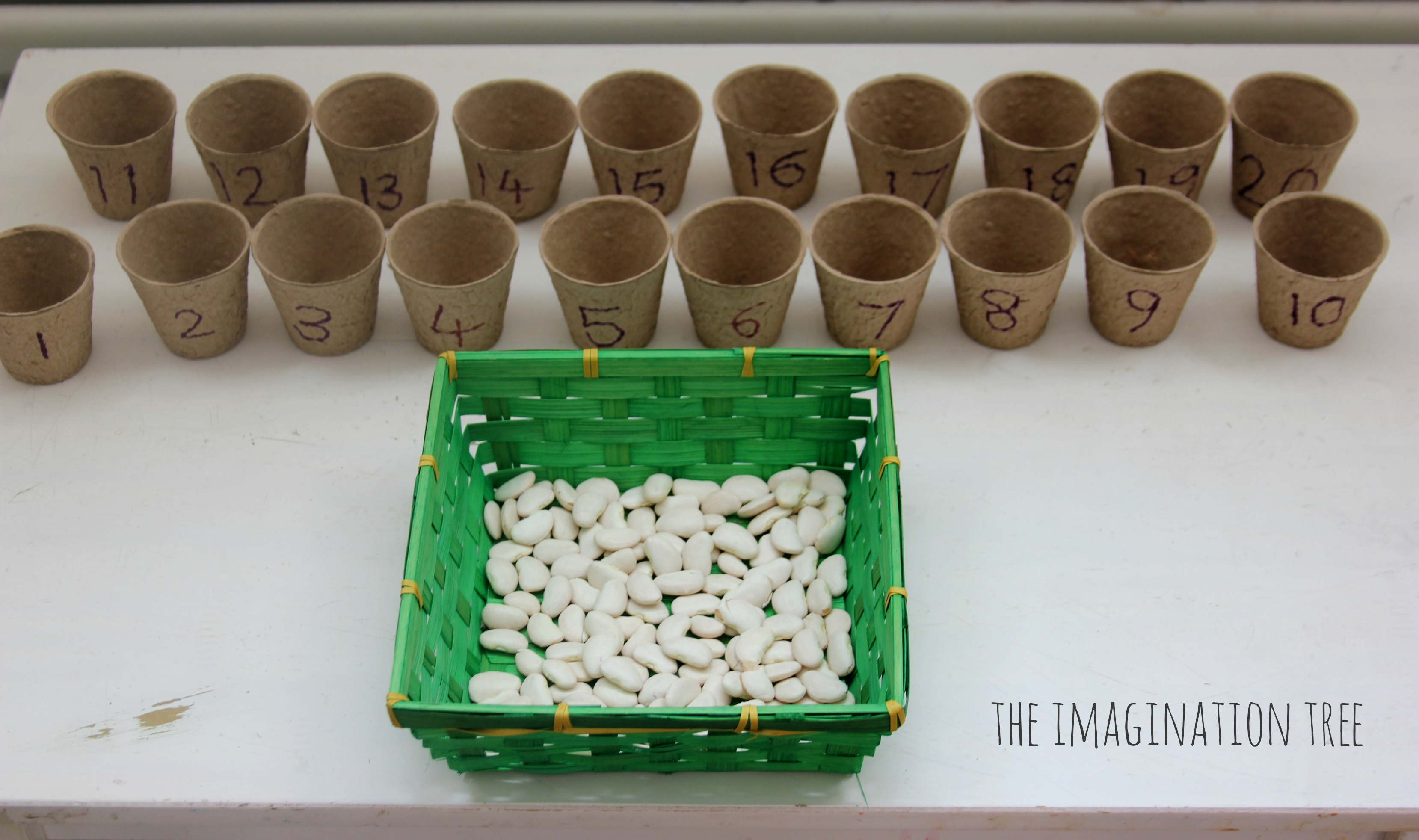 Beans and Flower Pots Counting Activity - The Imagination Tree