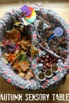 Autumn sensory discovery table