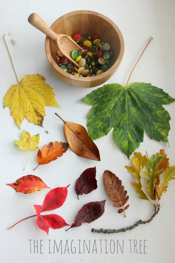 Invitation to sort and match gems to Autumn leaves