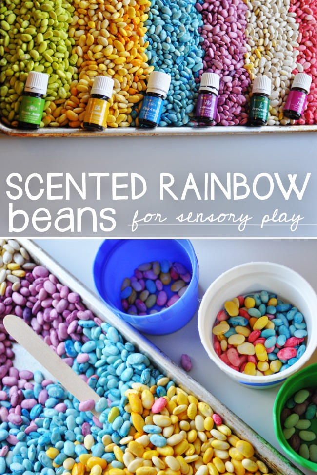 Anna tall rainbow beans
