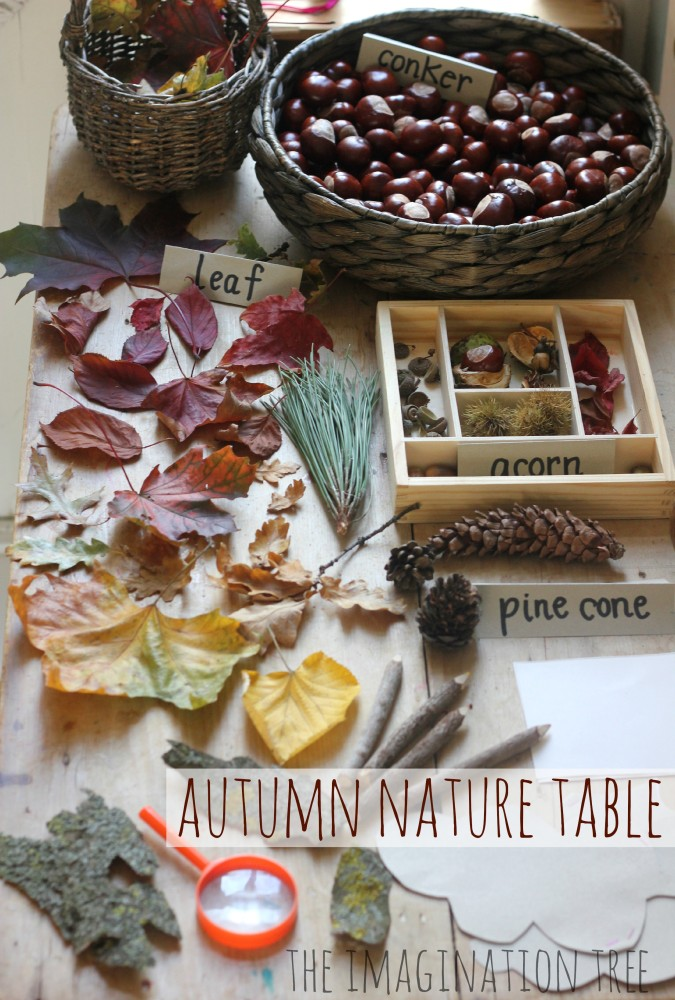 Autumn Nature Exploration Table