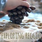 Exploring Reggio: An Introduction