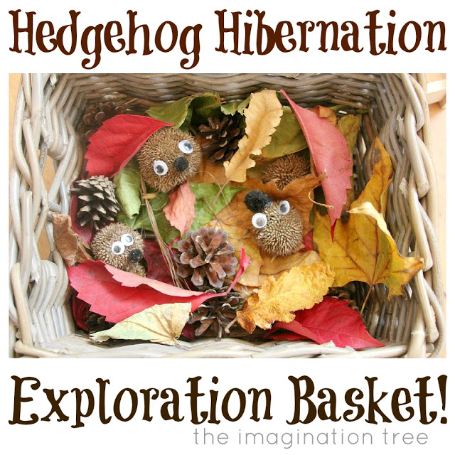 Hedgehog hibernation sensory basket from http://theimaginationtree.com