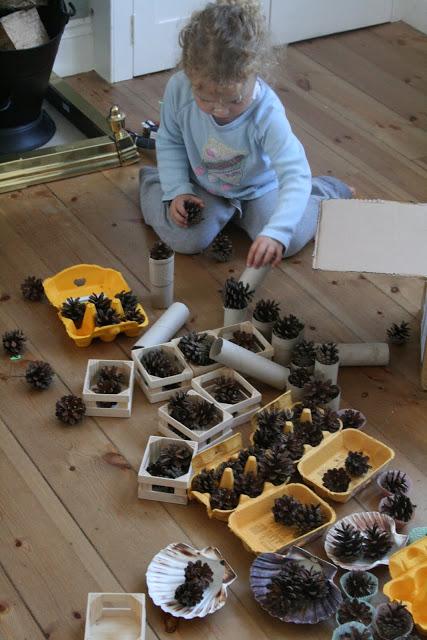 Discovery Box 11: Pine Cones