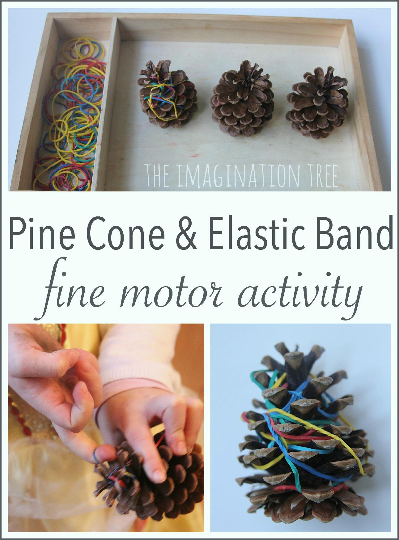 Fine Motor Activity For Preschoolers Pine Cones And