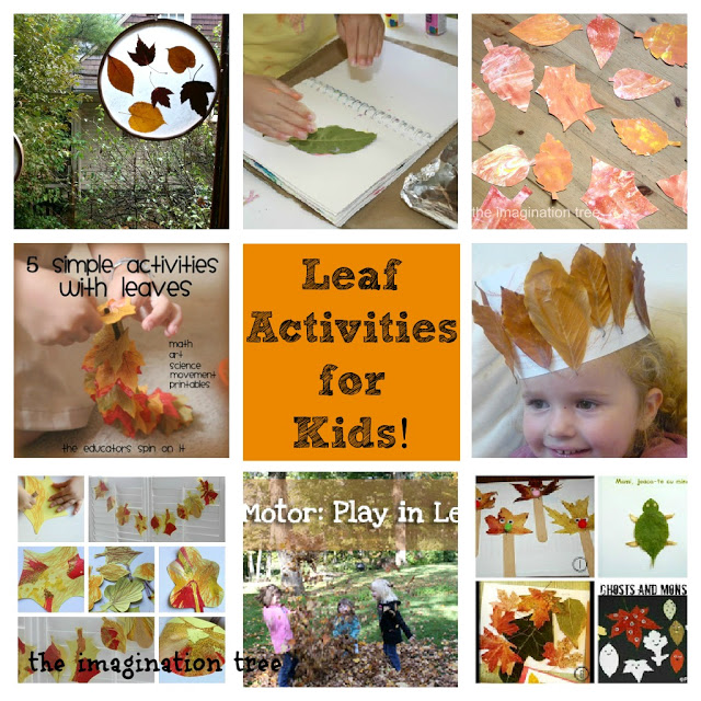 Leaf Activities for Kids! [from It's Playtime]