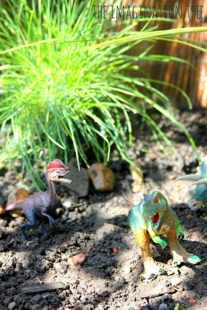 Dinosaur sensory garden