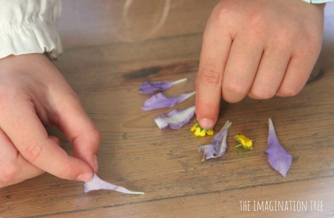 Pattern making with petals