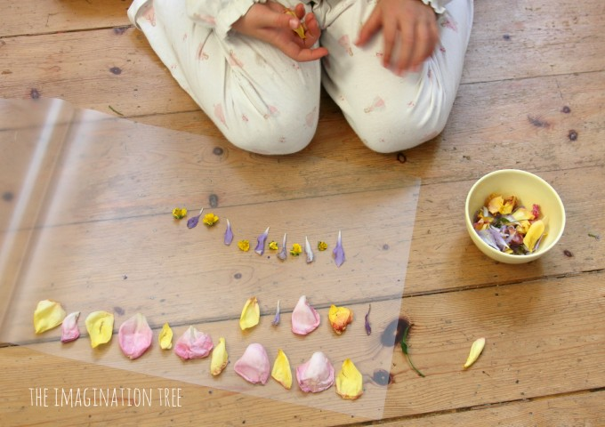 Petal crowns and patterns