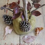 Autumn Spice Play Dough Recipe