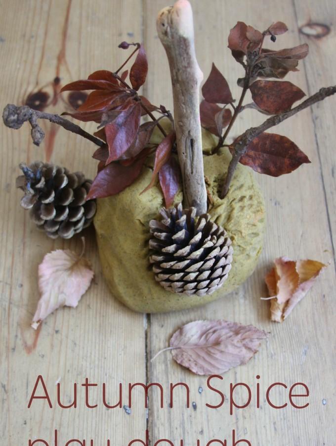 Autumn spice play dough recipe and play ideas