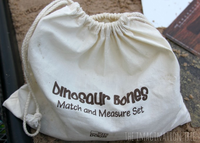 Dinosaur bones match and measure set bag