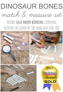 Dinosaur bones maths activity kit- double gold award winning product by The Imagination Tree