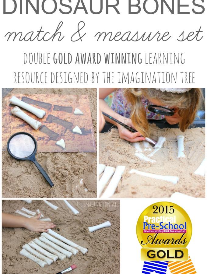 Dinosaur bones maths activity kit- double gold award winning product by The Imagination Tree