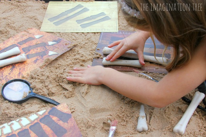 Dinosaur bones maths activity set