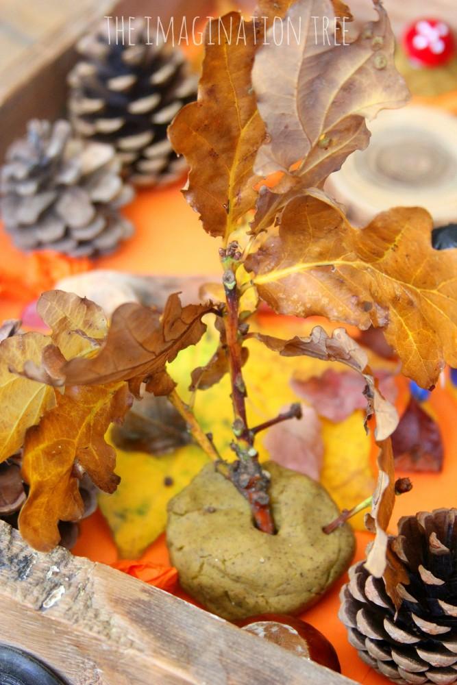 Autumn small world