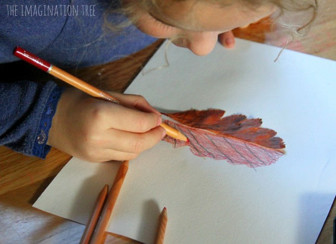 Drawing half leaf mirror pictures- a nature art activity for kids