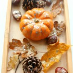 Invitation to Create with Autumn Treasures