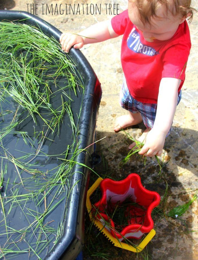 Dinosaur swamp sensory play with natural materials