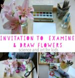 Invitation to Examine and Draw Flowers