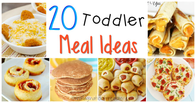 20 Great Toddler Meal Ideas!
