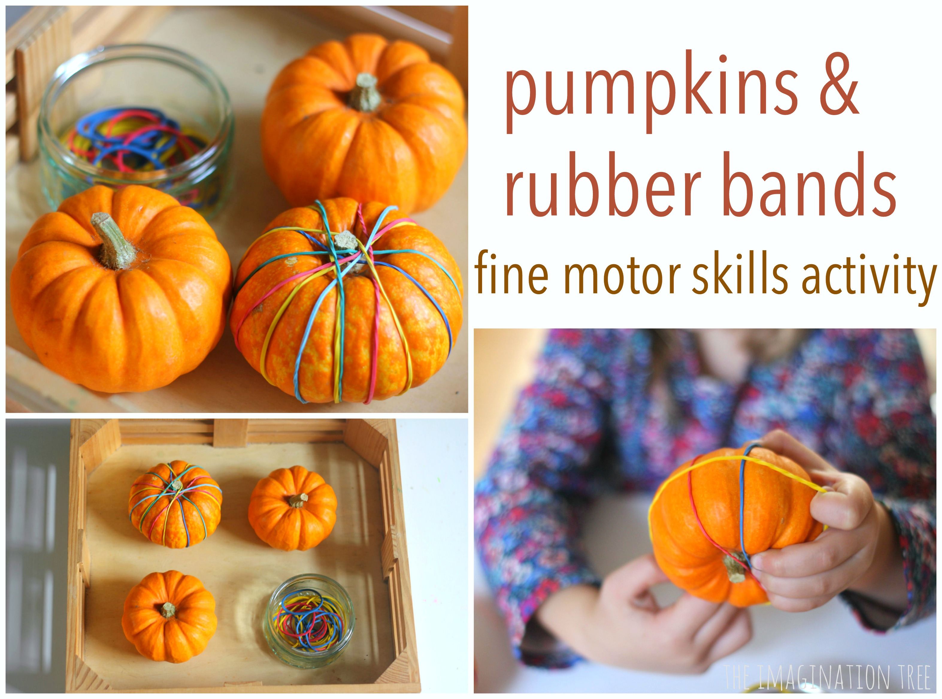 Pumpkin Fine Motor Skills Activity The Imagination Tree