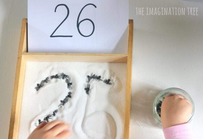 spider-sensory-counting-and-addition-tray