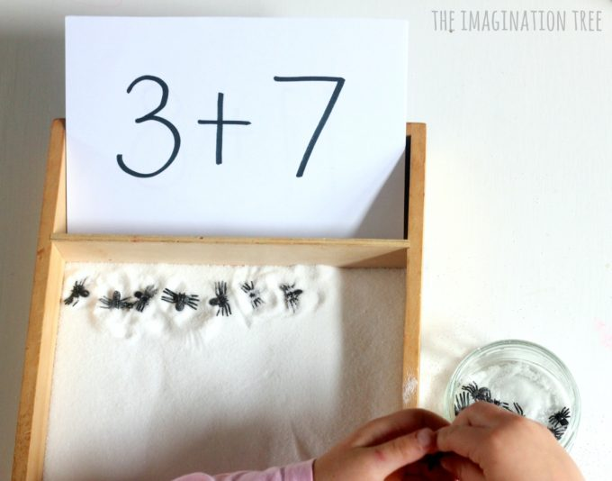 spider-sensory-counting-tray