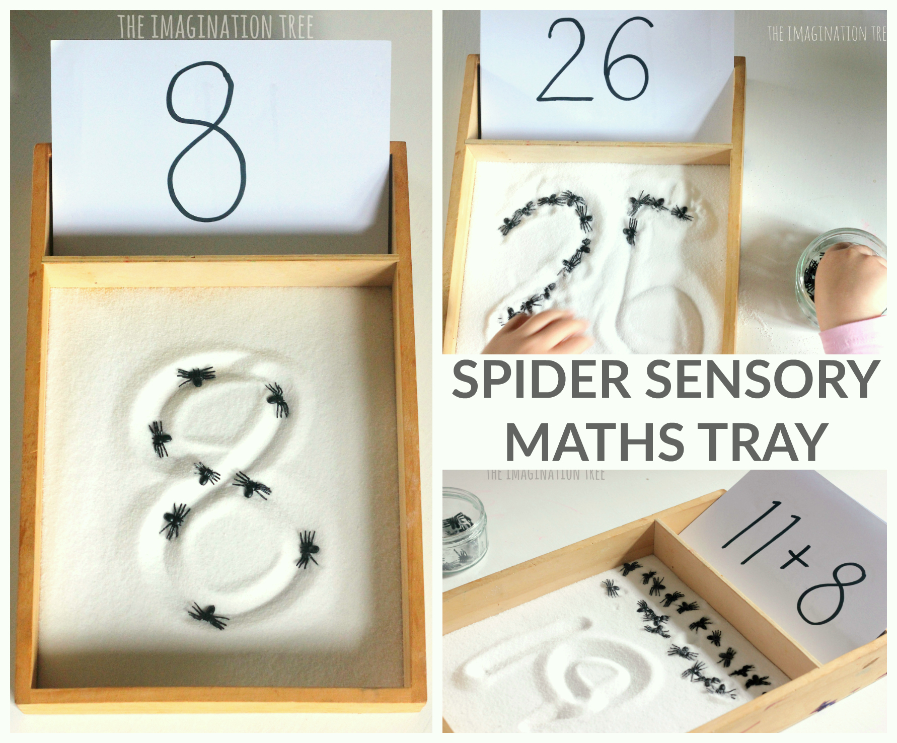 Counting Spiders Sensory Maths Tray - The Imagination Tree