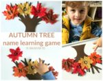 Autumn Tree Leaves Name Learning